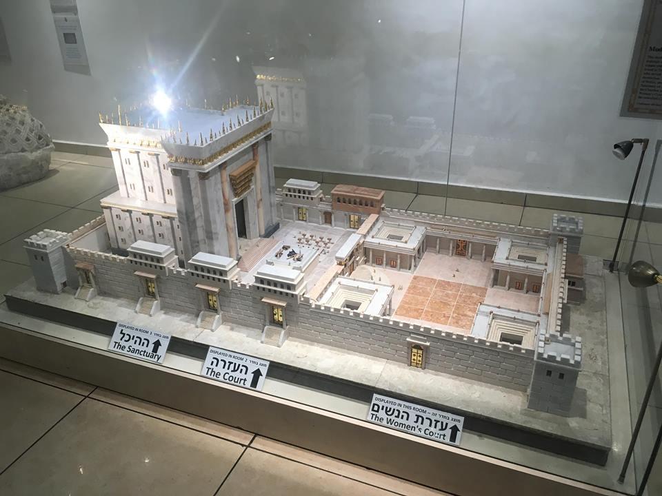 Temple-Institute-4